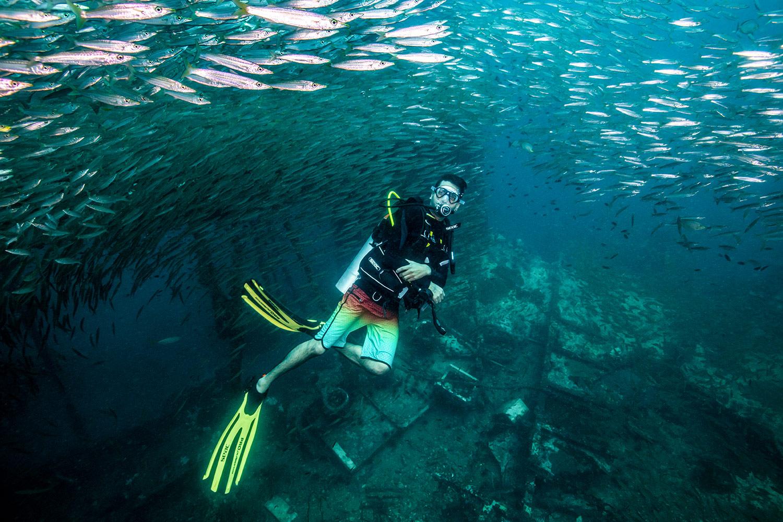 Fun Dive King Cruiser