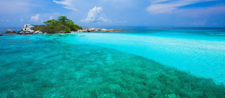 Racha Noi Dive Site Phuket, Sirolodive